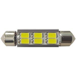 LED light bulbs T11x36-C white 6 LED SMD 5730, 6300K 10x36cm 250 lm 0.08A 12-30V BI +/- V4